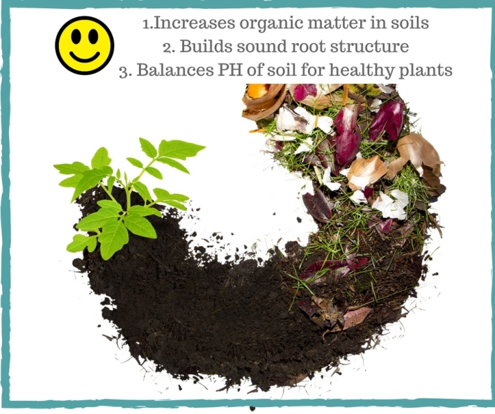 1.Increases organic matter in soils2. Builds sound root structure3. Balances PH of soil for healthy plants